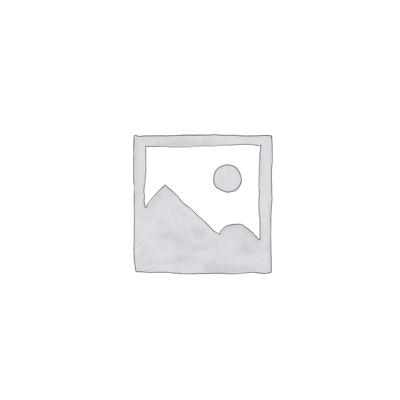 €16,00 | Drachen- Medallion Erdenhüterdrache